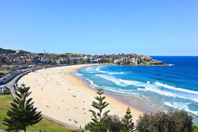 Fancy investing in Bondi? For just $96 you can have a brick